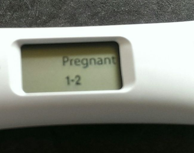 Day No People Fragility Nature Pregnancy Announcement Pregnancy Test , Test, Happy Day, Happiness, Baby, New Live