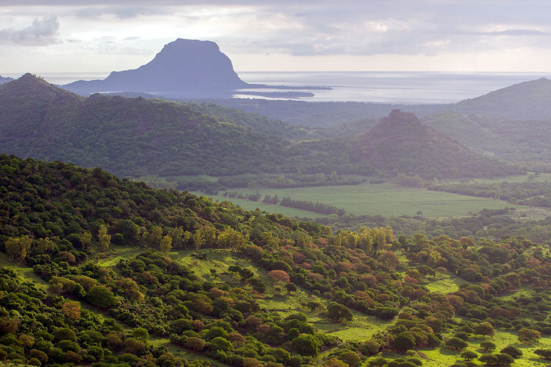 Mountain View Nature Wildlife & Nature Greenry Mauritius Island  Mauritius 🇲🇺 Mountain_collection Mountains And Sky