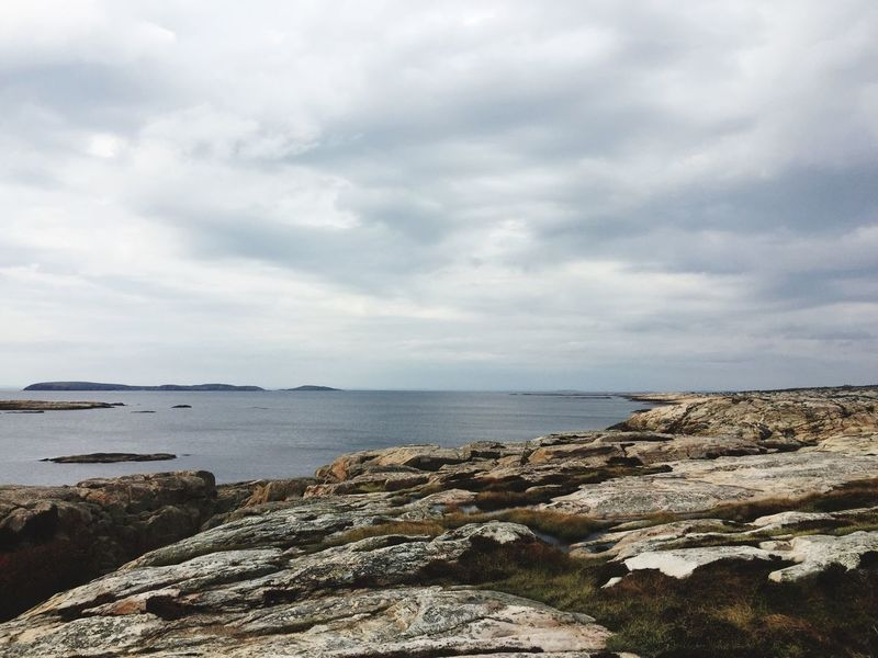 Water Nature Norway The Week On EyeEm Outdoors Hvaler Norway Noedit View Trip Hiking Cliff