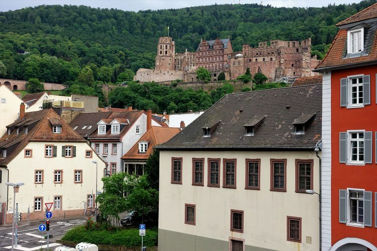 Beautiful GERMANY🇩🇪DEUTSCHERLAND@ Heidelberg Schloss Sunnyday☀️ Man Made Object Man Made Structure Poi Schlossruine SonnigerTag  TOWNSCAPE Old Town Human Settlement Town Tiled Roof  Roof Housing Settlement Rooftop Residential Building Roof Tile Castle