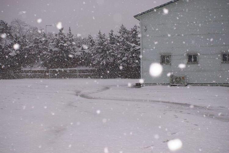 Winter Snow Fujifilm S5pro Cold Temperature