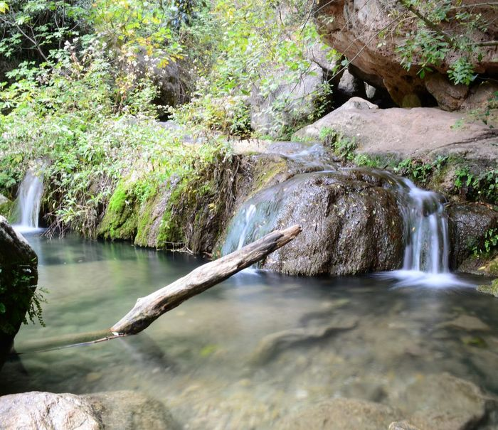 Water_collection Water Waterfall Capture The Moment Protecting Where We Play River Riu Cascada Nature_collection EyeEm Gallery EyeEm Nature Lover EyeEm Best Shots Lanscape Photography Landscape_Collection Landscape_photography Landscapes Waterfall_collection Green Moment Of Silence Beuty Of Nature Catalunya Nature And Lanscapes Nature