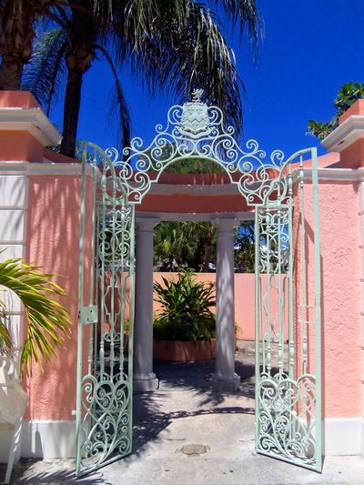 Filigree decorative wrought iron gate in a tropical setting. Architecture Blue Built Structure Day Decorative Door Doorway Entrance Entry Entry Fancy Gate Filigree Garden Wall Gate No People Ornate Outdoors Palm Tree Pink Plant Stone Wall Tree Tropical Wrought Iron Wrought Iron Gate Wrought Iron Gates