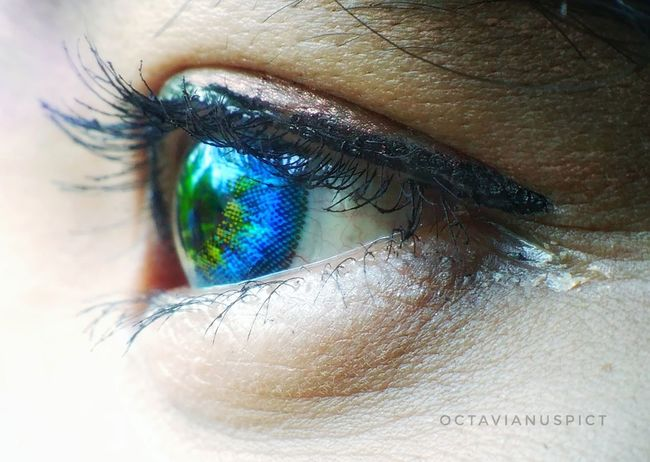 Human Eye Close-up Eyesight Eyelash Iris - Eye Eyeball Young Adult Phonecamera Lenovoa6000 Eyeemindonesia PhonePhotography EyeEm Best Shots EyeEm Gallery Photophone  Day Octavianuspict Phonegraphy_indonesia Beauty INDONESIA Beautiful Woman Salatigacity