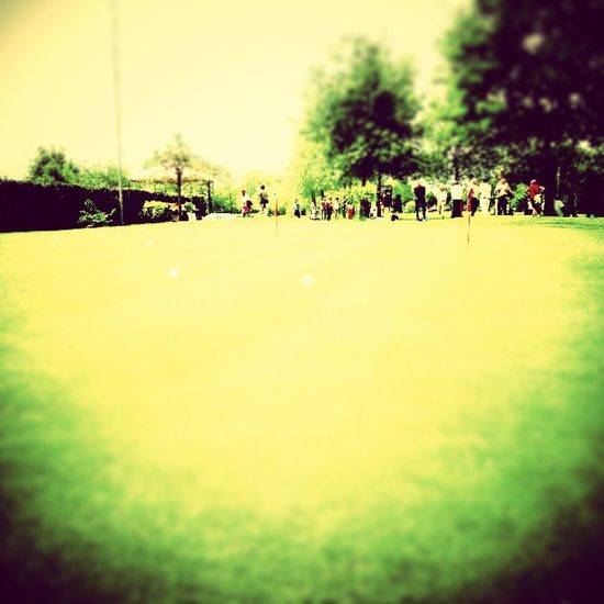 putting green contest