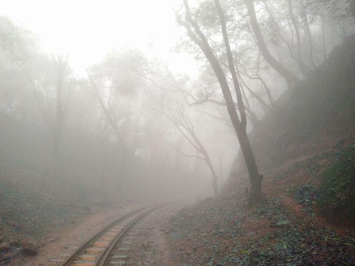 Railroad Track Fog Foggy Weather Nature Scenics Misty Morning Matheran Hillstation India