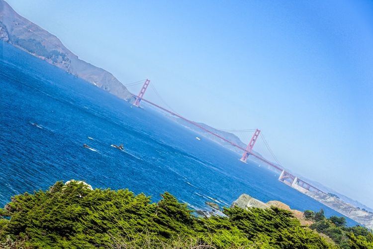 Water Sky Sea Nature Plant Day Scenics - Nature Blue Beauty In Nature Transportation Tranquility Tree No People Architecture Built Structure Tranquil Scene Clear Sky Mountain Sport Outdoors Sailboat Golden Gate Bridge