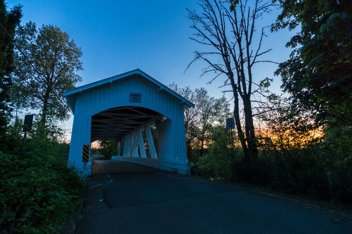 Covered Bridges of Oregon Architecture Bare Tree Blue Blue Hour Bridge Bridge - Man Made Structure Built Structure Covered Bridges Of Oregon Dark Day Diminishing Perspective Empty Footpath Growth Long Nature Night Nightphotography No People Outdoors Sky The Way Forward Tree Vanishing Point Walkway