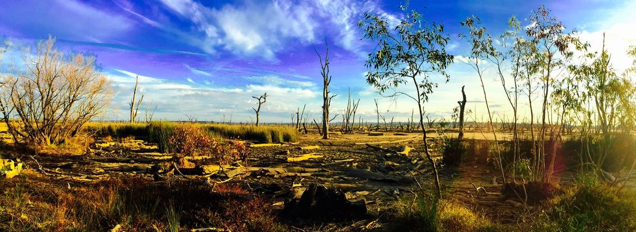 Taking Photos On My Door Step Water Wonders Lake Mulwala Has Been Emptied Amazingly Beautiful The Great Outdoors - 2015 EyeEm Awards