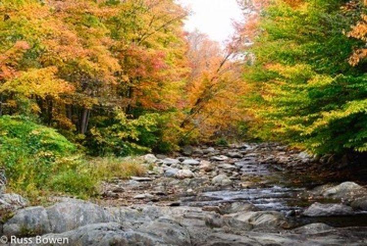 Fall in VT First Eyeem Photo