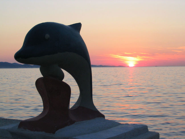 Croatia Holiday Mediterranean  Mediterranean Sea Travel Beauty In Nature Close-up Day Dolphin Eyeem Travel Horizon Over Water Hrvatska Nature No People Outdoors Scenics Sculpture Sea Sky Statue Sun Sunset Tranquility Travel Destinations Water