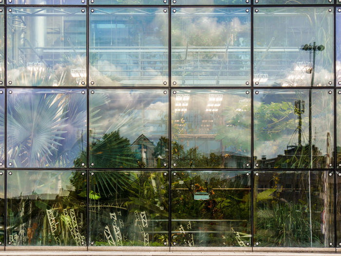 URBANANA #urbanana: The Urban Playground Reflection Schokoladenmuseum Architecture Available Light Building Built Structure City Day Full Frame Glass Glass - Material Greenhouse Indoors  Nature No People Office Plant Plant Nursery Reflection Streetphotography Transparent Tree Window Window Frame