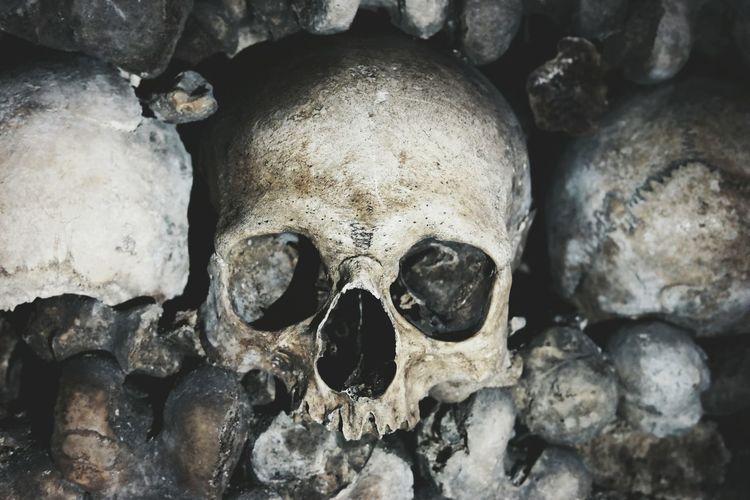 Parisian Catacomb skulls Skull Face Paris Catacombs Paris, France  Europe_gallery Skulls And Bones Nightphotography Exploring The City Streets Seetheworld