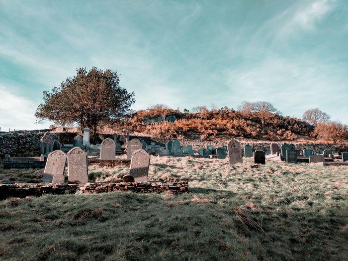Cemetery on hillside, sunset, winter