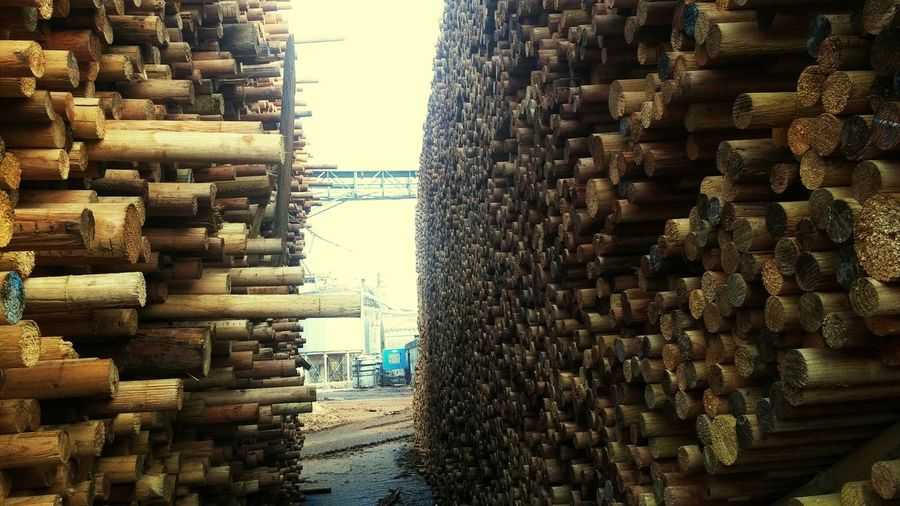 Large Group Of Objects Abundance Stack Timber No People Outdoors