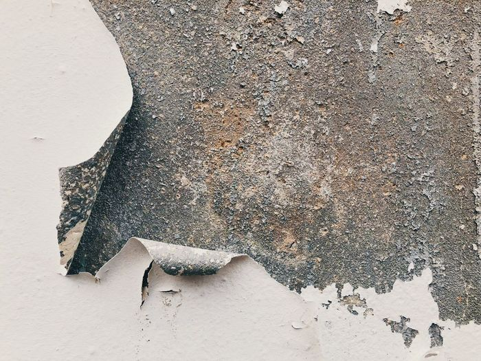 Peeled of plastic color on the wall Concreat Cement Wall Wall Color Peeling Paint No People Textured  Outdoors Rough Land