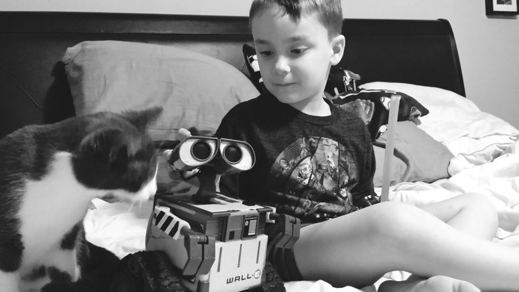 B&w KiMartinez Photography Relaxing Hanging Out Wall-e Enjoying Life Lifestyle Jomo Sassypants Kitty Cat