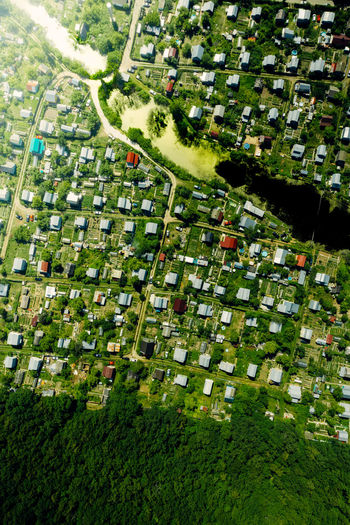 High angle view of trees and buildings in field