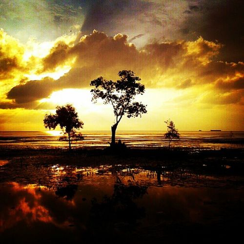 Testing new instra filter Sunset Keprifoto Karimun Beach Sky Cloudporn Andrography Trees Reflection