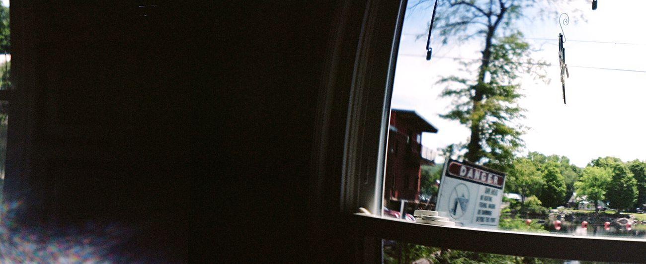 Window Tree Sprocket Rocket Panorama Film Koduckgirl