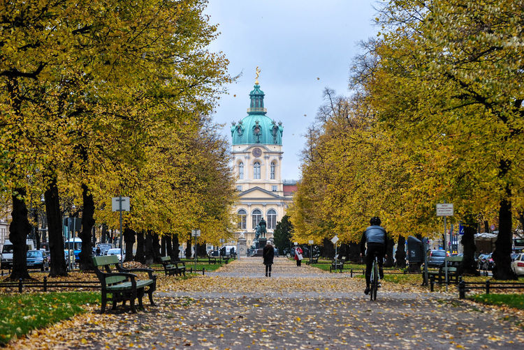 Rear view of person on bicycle amidst trees leading towards charlottenburg palace during autumn