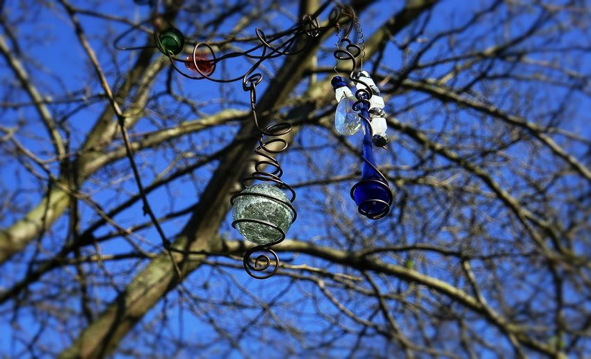 Tree Charms Backgrounds Bare Tree Beauty In Nature Blue Blue Sky Branch Close-up Day Directly Below Focus On Foreground Glass Ornaments Glasswork High Section Illuminated Low Angle View Metal Object Nature No People Outdoors Selective Focus Sky Swirls Tranquility Tree Twig