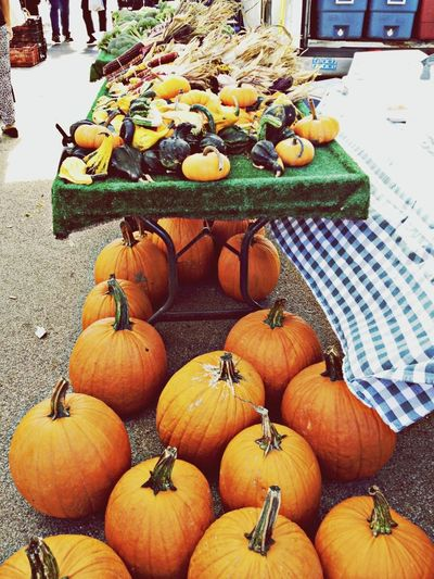 Colors Of Autumn EyeEm Best Shots