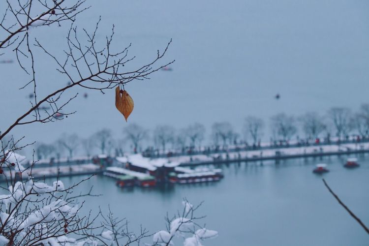 The First Snowflakes West Lake Hangzhou Water Nature No People Sky Transportation Waterfront Tree Plant Outdoors Lake Day Humanity Meets Technology