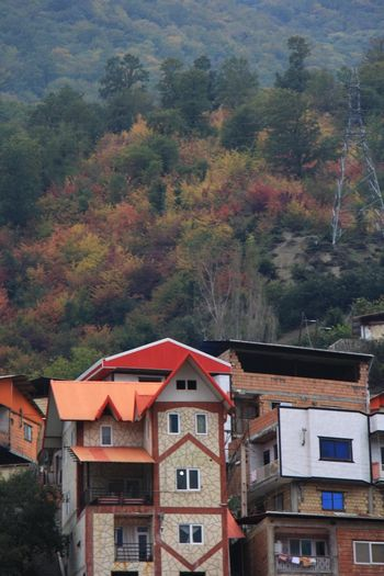 Photography Outdoors Beauty Life Dailyphoto Mountain Nature Day Travel North House No People Daily Life Close-up Building Tree Colors Colorful Intresting Place Architecture Silence Iran Persian Gilan Gilan,iran