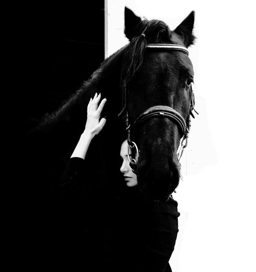 Portrait of woman with horse against black background