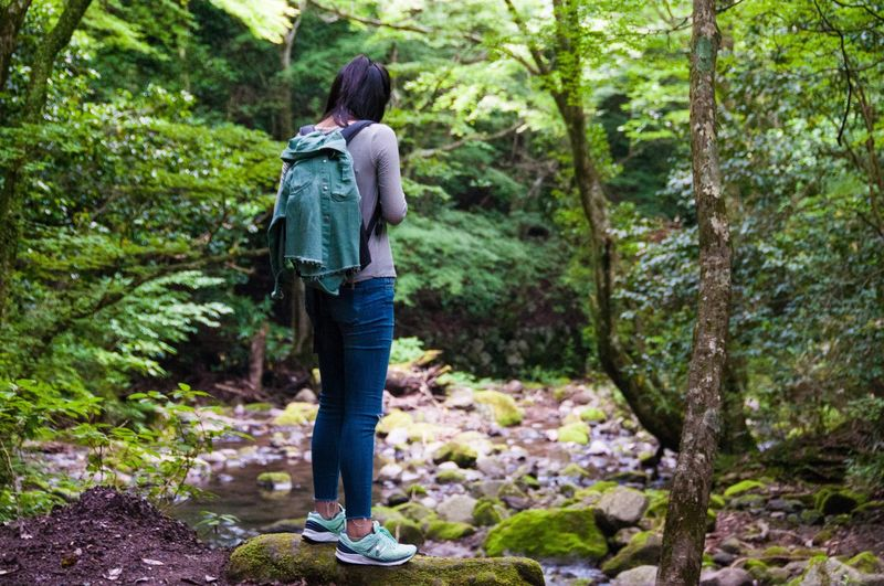 Feel The Journey Forest Girl Adventure Wild Nature Unknown Ultimate Japan