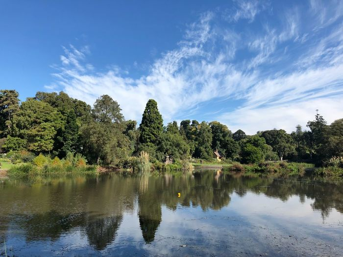 Melbourne Royal Botanical Garden Royal Botanic Gardens Melbourne Water Tree Reflection Plant Sky Lake Tranquility Beauty In Nature Nature Tranquil Scene Growth Scenics - Nature Cloud - Sky No People Waterfront Green Color Day Outdoors Idyllic