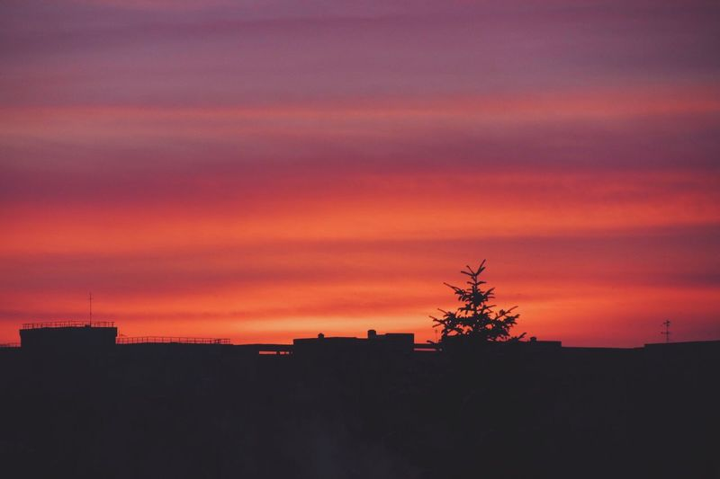Evening falls Winter VSCO Vscocam Nature Photography Clouds And Sky Sky Collection Sunset Colors