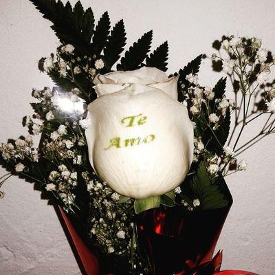 Rosa natural con el petalo tatuado con un mensaje de amor en el petalo, visitanos en www.graficflower.com y sorprendelo@s. Floweroftheday Flowerslovers Flower Flowerstagram Flowers Roses Rosestattoo Rosas Ramosderosas Flores Floristerias Floristeriasmalaga Graficflower Flores -a-domicilio-graficflower
