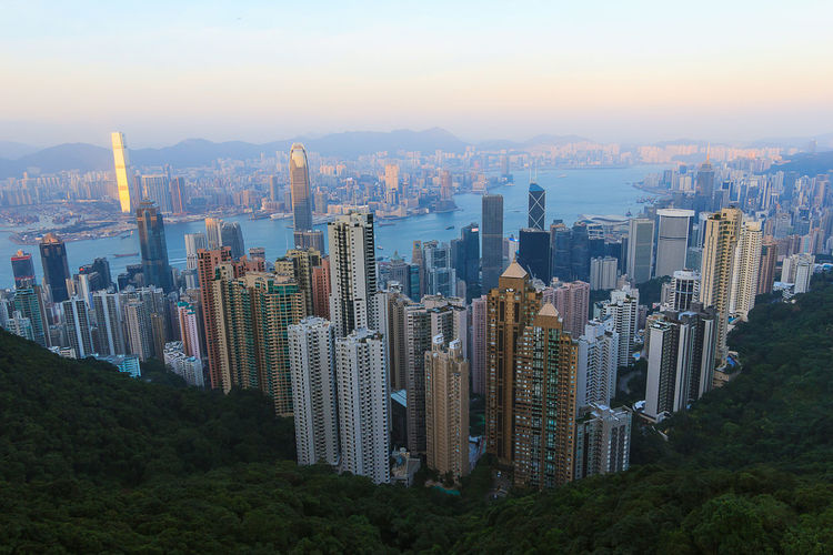 HongKong Architecture Building Exterior Built Structure City Cityscape Crowded Day Development Downtown District Financial District  Growth Modern Mountain Nature Office Park Outdoors Sky Skyscraper Tall Tall - High Tower Travel Destinations Tree Urban Skyline Victoria Peak Water