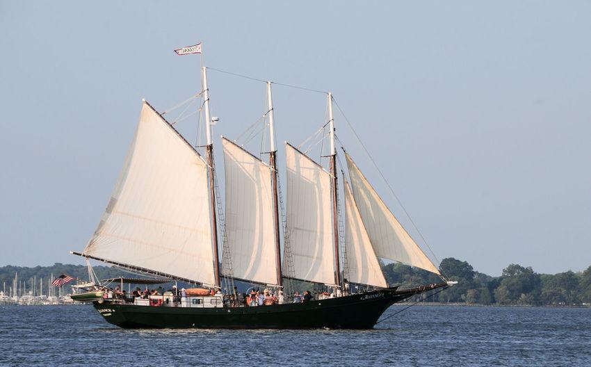 Sail Boat 5279