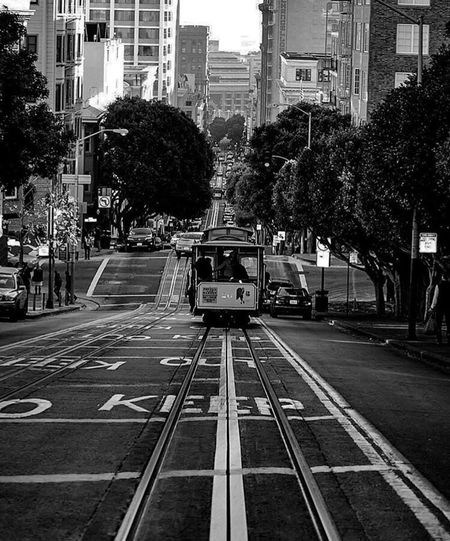 Iconic San Francisco Trolly Trolly Car San Francisco, California San Fransisco San Francisco California San Francisco Streets Public Transportation Public Transport Blackandwhite Black And White Photography Transportation City Public Transportation