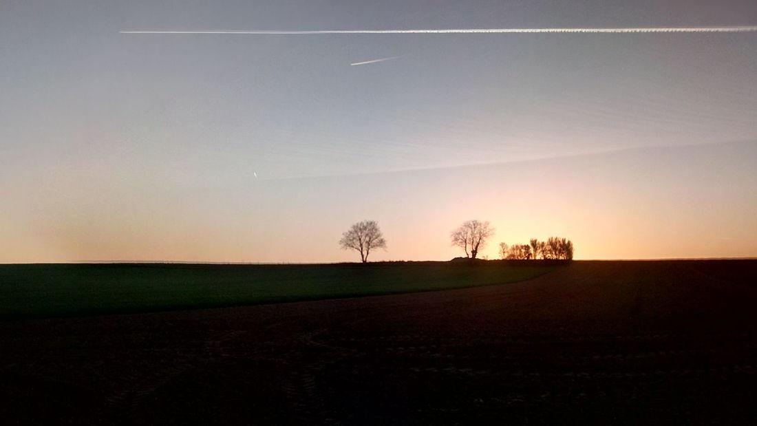 Sunset Astronomy Rural Scene Agriculture Tree Dawn Field Fog Sky Landscape