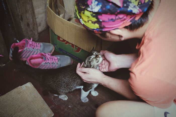 Thursday petting Colors Men Tabby Cat Kampung Life Kampung Vintage Cat Photography Cat Lovers Cats Cat High Angle View Real People One Person Indoors  Young Women Young Adult Day Close-up People