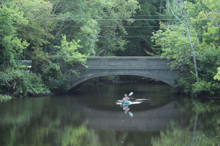 Lone Kayak Tree Water Plant Reflection Lake Bridge Nature