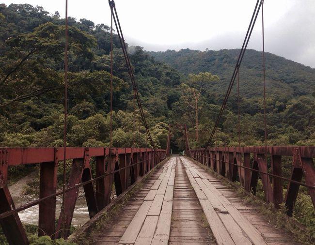 Way to Tapantí Bridge Nature Costa Rica Bridge - Man Made Structure Nature_collection Nature Photography Cartago