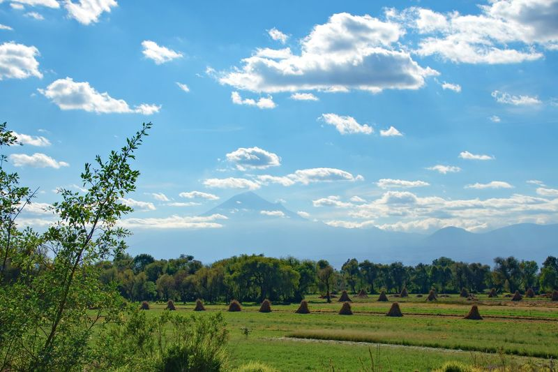 Desde Cacaxtla Tlaxcala, Mexico Volcano Popocatepetl Tree Rural Scene Agriculture Field Mountain Crop  Sky Cloud - Sky Plant
