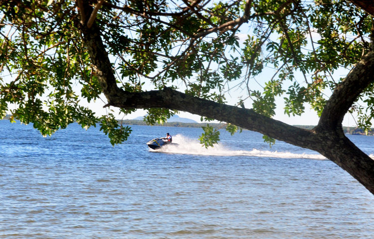 Jet Sky Lake View Water Sports Tree Water Nautical Vessel Tree Trunk Sky Jet Boat
