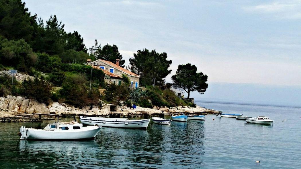 Eye Em Nature Lover Seaside Mali Lošinj Landscape Seaside Beach Sea Croatia Nature Natur