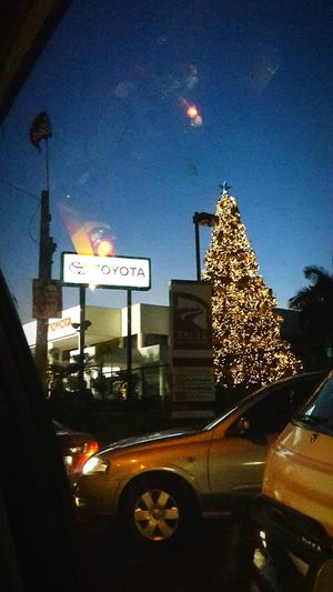 Chirstmas Tree Trafic Listening To Music <3 Toyota