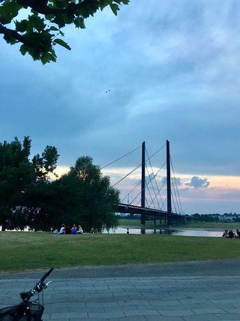 Düsseldorf Architecture Sky Connection Built Structure Bridge - Man Made Structure Suspension Bridge Bridge