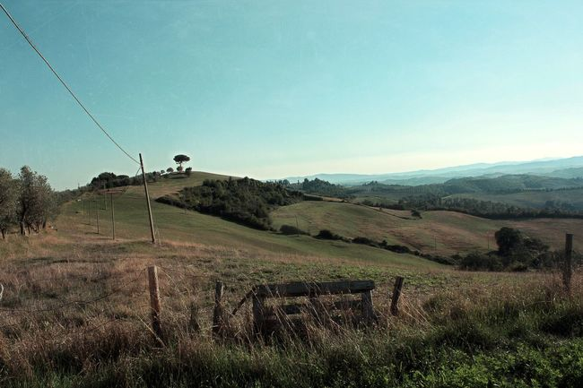 Agriculture Beauty In Nature Blue Sky Clear Sky Day Fence Field Growth Italy Landscape Nature No People Outdoors Rural Scene Scenics Sky Stromleitung Toskana Toskana,italy Tranquil Scene Tranquility Tree Tuscany Tuscany Countryside Tuscany Italy