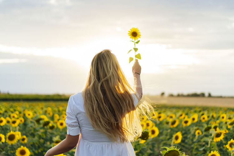 Rear view of woman with sunflowers on field against sky