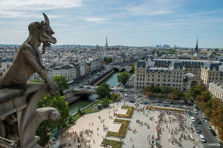 Medieval Gargoyle On Notre Dame Cathedral Facade, Paris, France