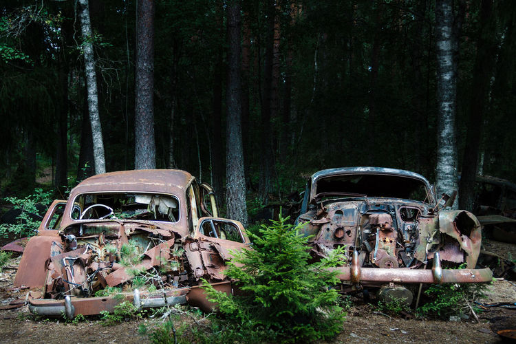 Abandoned car against trees